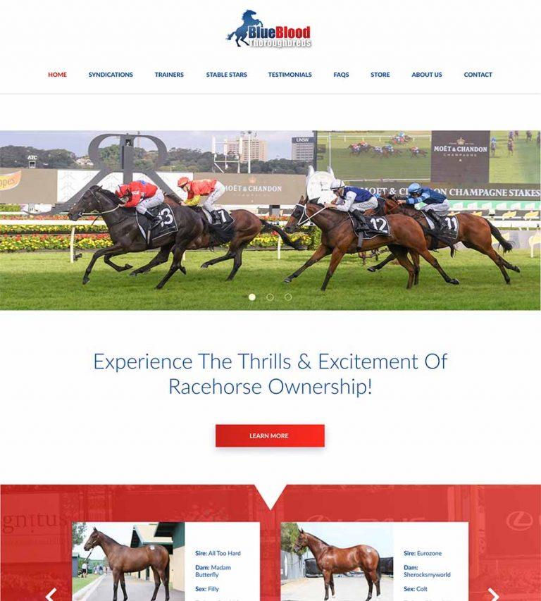 Blueblood-Thoroughbreds-Racehorse-Syndication-Shares-1
