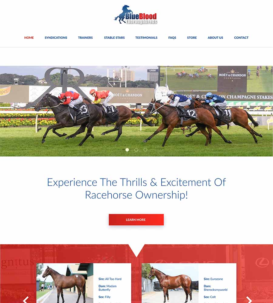 Blueblood-Thoroughbreds-Racehorse-Syndication-Shares-1